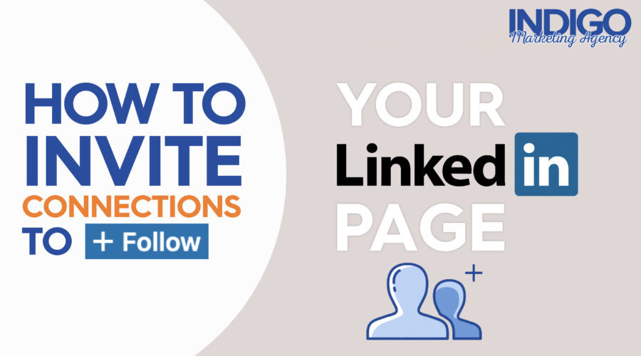 How to invite Connections to Follow your LinkedIn
